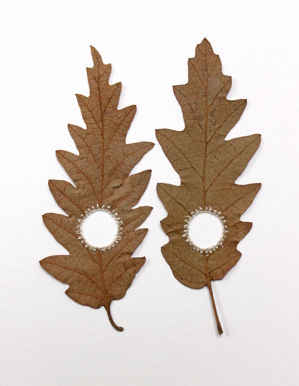Oak Circles lV (ArthouseLA) close-up.jpg