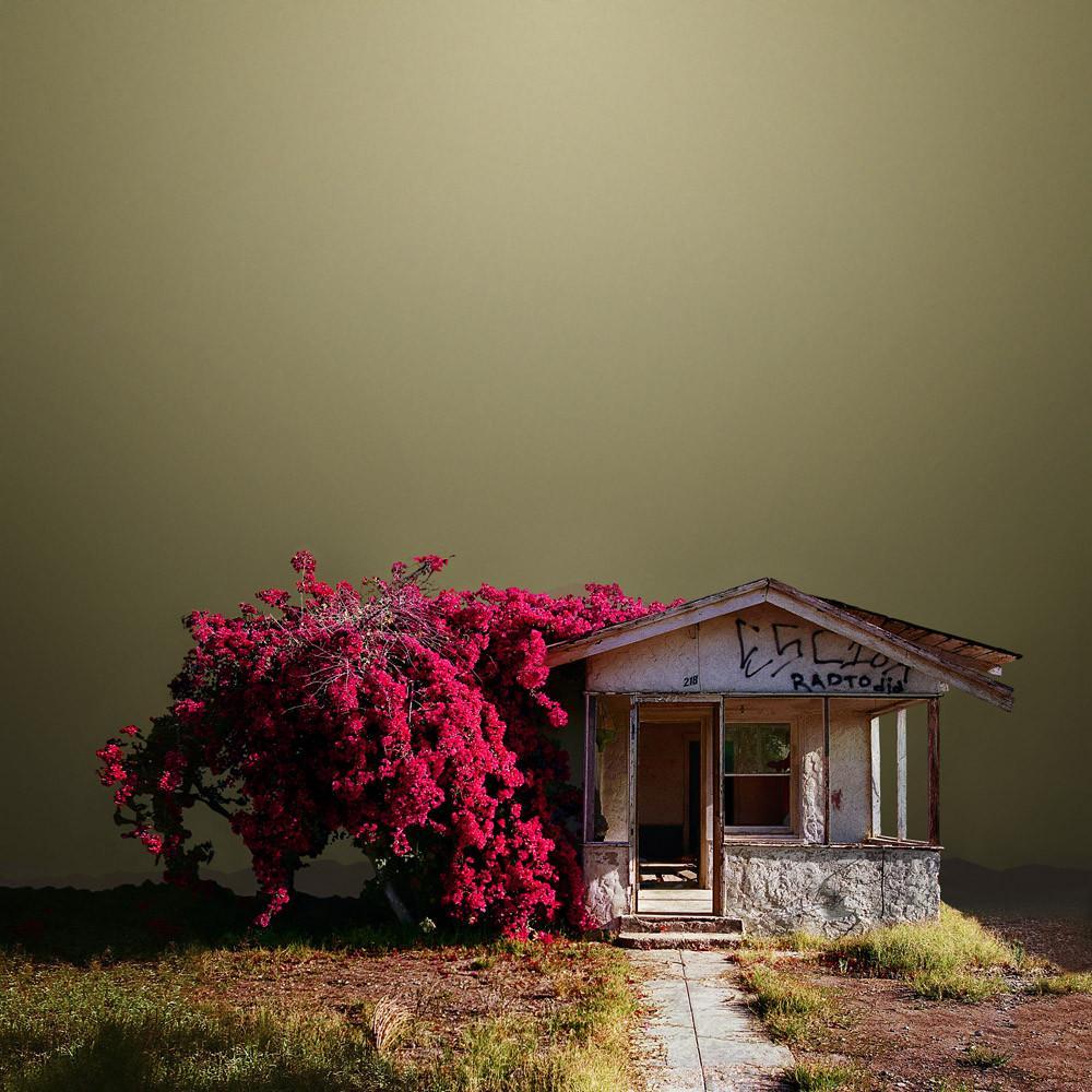 37 Abandoned_House_40x40_1024x1024.jpg