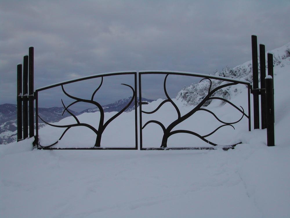 Endresen Winter gate shot.JPG
