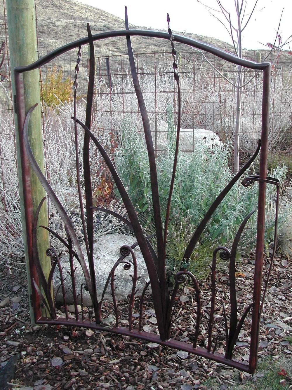 Grasses_and_Fiddlehead_open_gate.JPG