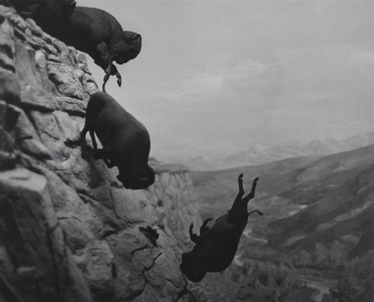 "David Wojnarowicz; ""Untitled (Buffalo)"", 1988-89"