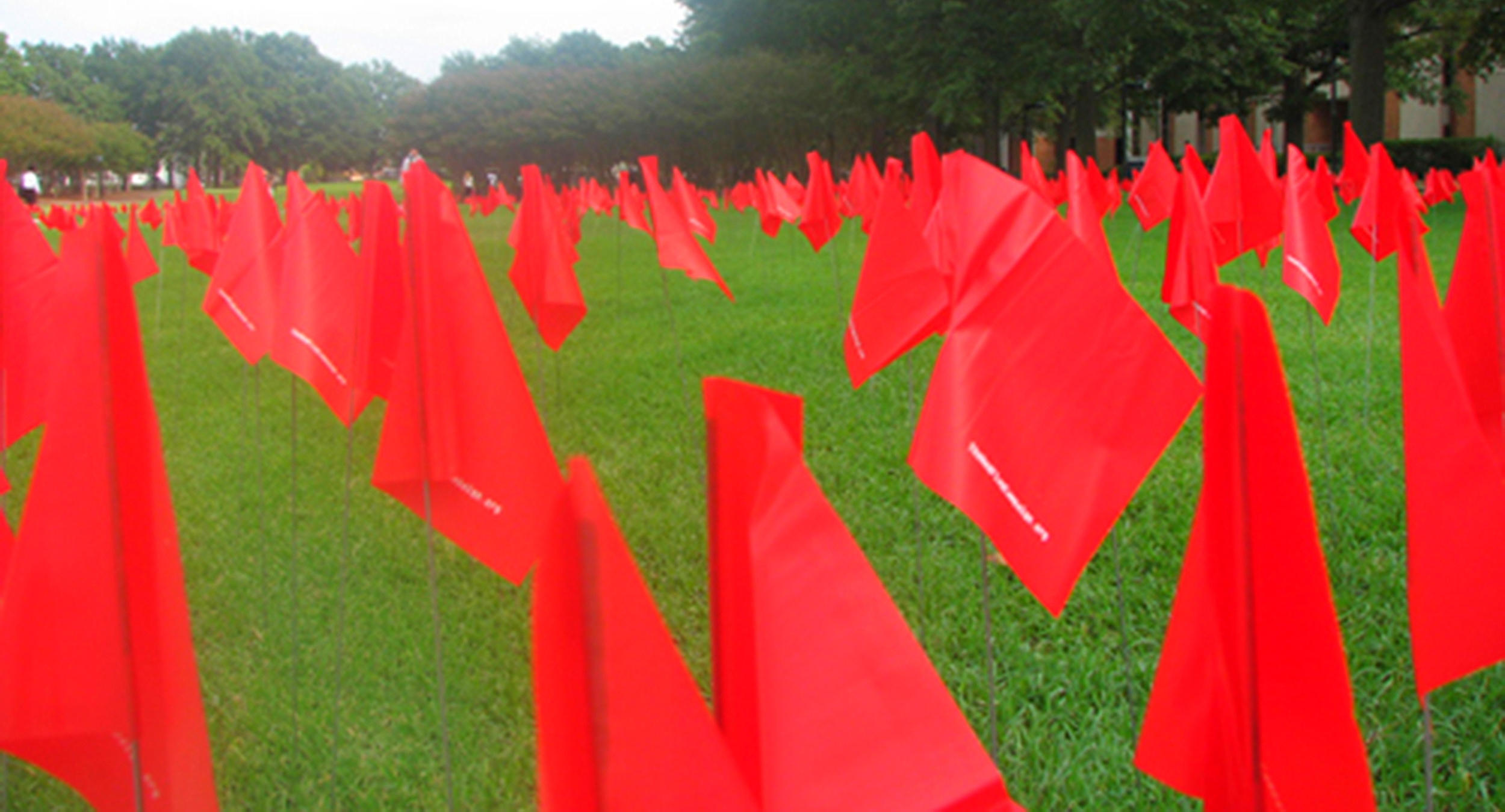 The Red Flag Campaign
