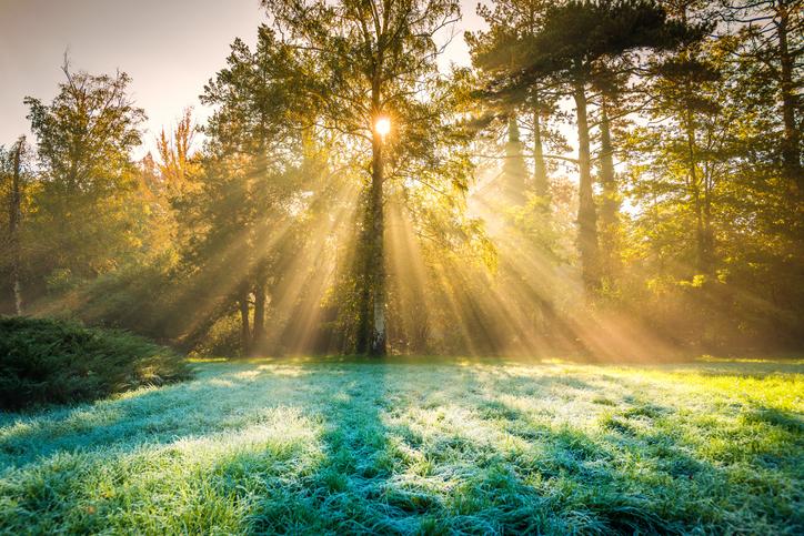 Living Hope Church Fall Morning-483883066.jpeg