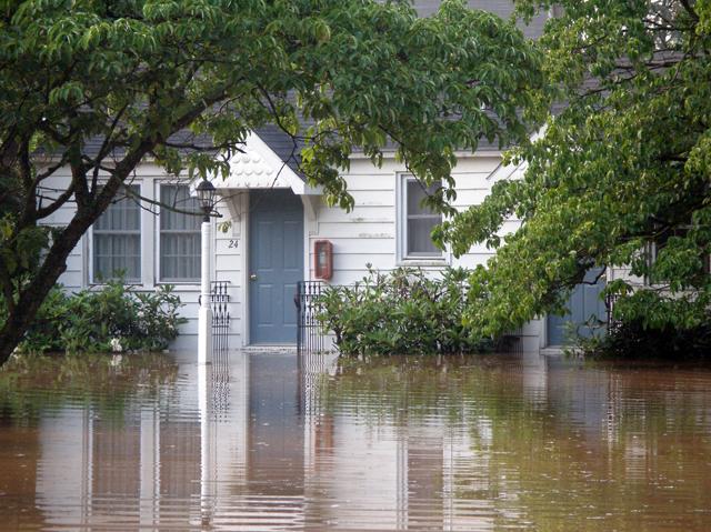 flood06 11 72dpi.jpg