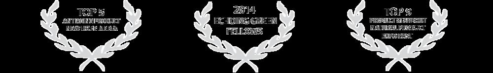 award-bannerfixed.png