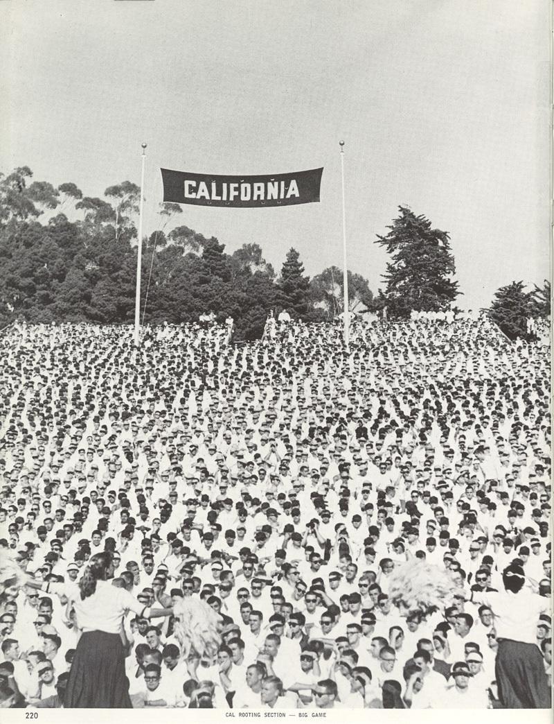 Cal Vintage