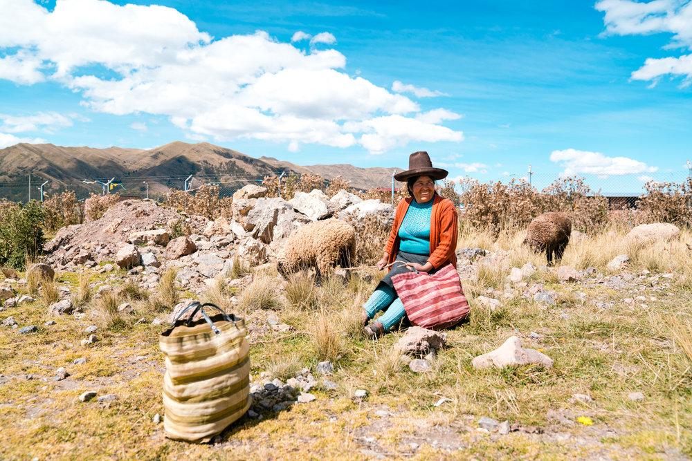 Peruvian woman watches over her sheep at a local farmers market. Laguna Puray. Peru, 2018