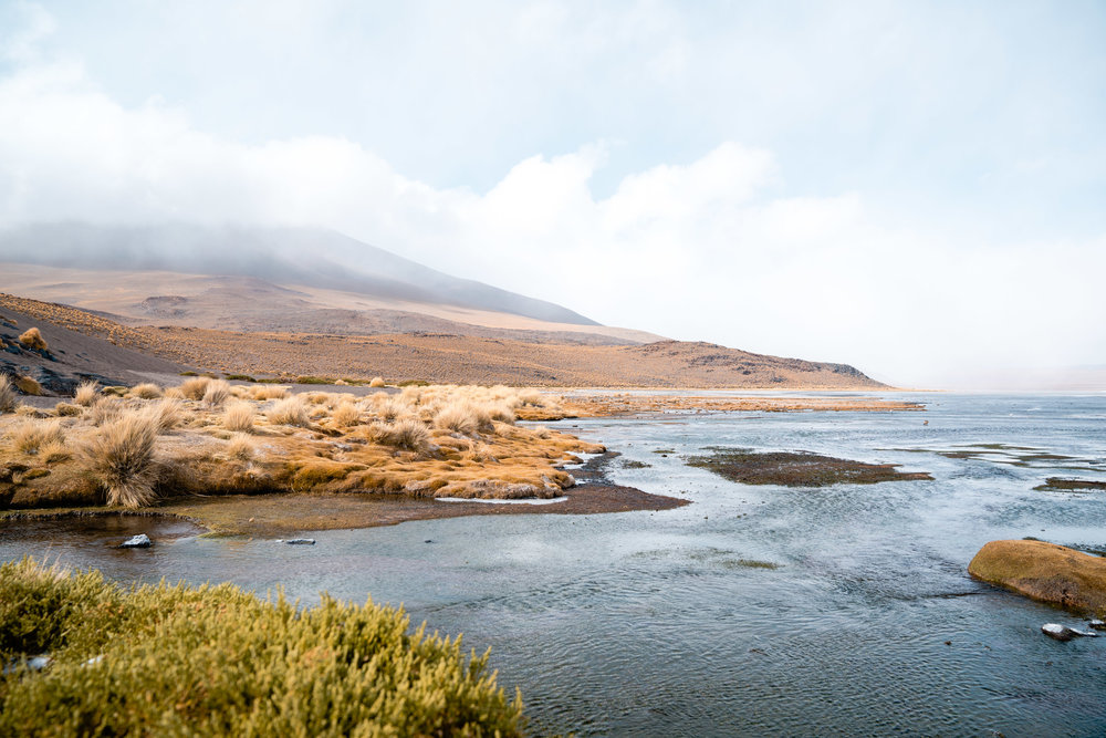Laguna Colorada in the grasp of a winter flurry. Bolivia