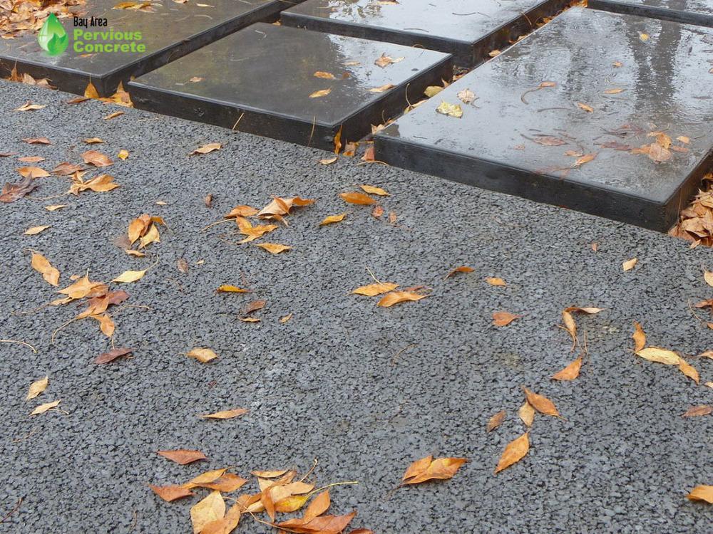 Pervious Concrete Driveway