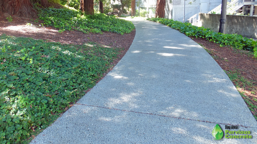 BAPC's Polished pervious concrete walkway is still looking and performing well.