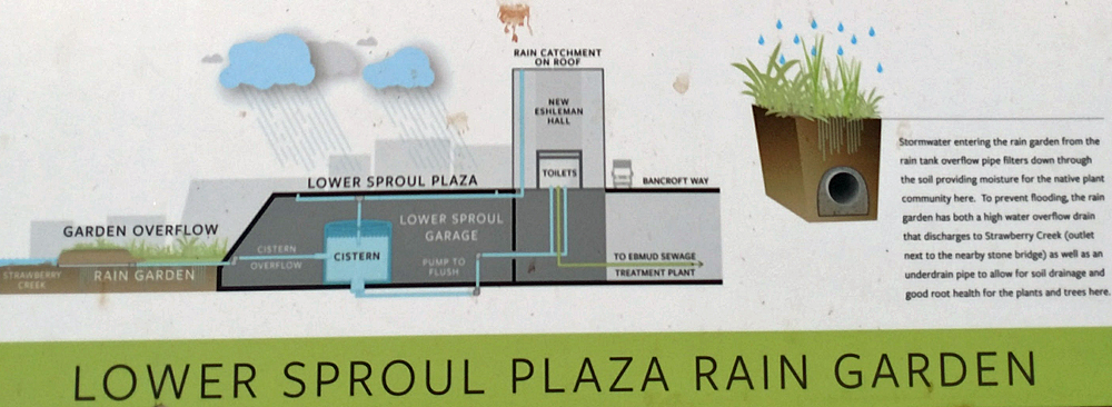 Diagram of the greywater system installed under Lower Sproul Plaza - Click to Enlarge