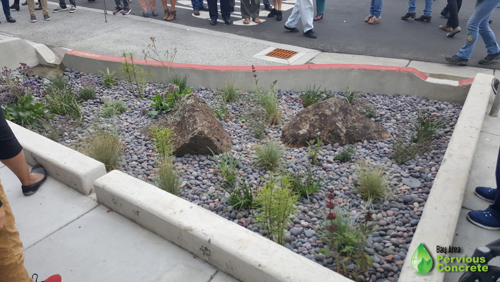 Holloway Green Street rain garden bulbout