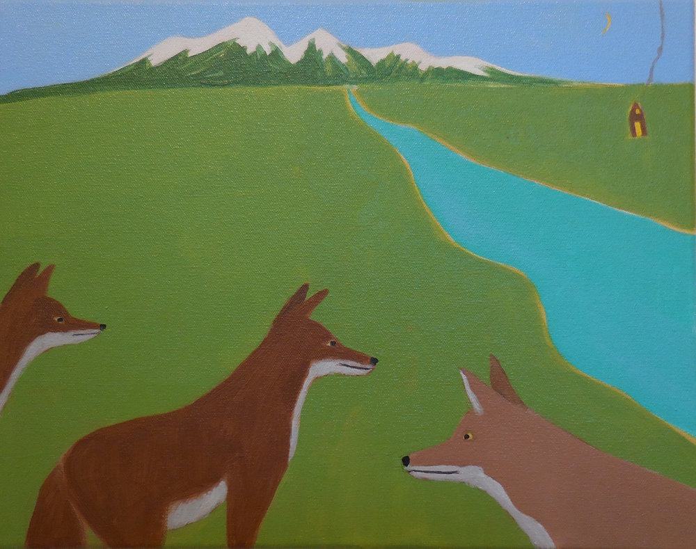 Coyote, Acrylic on Canvas by Sharon Shaver