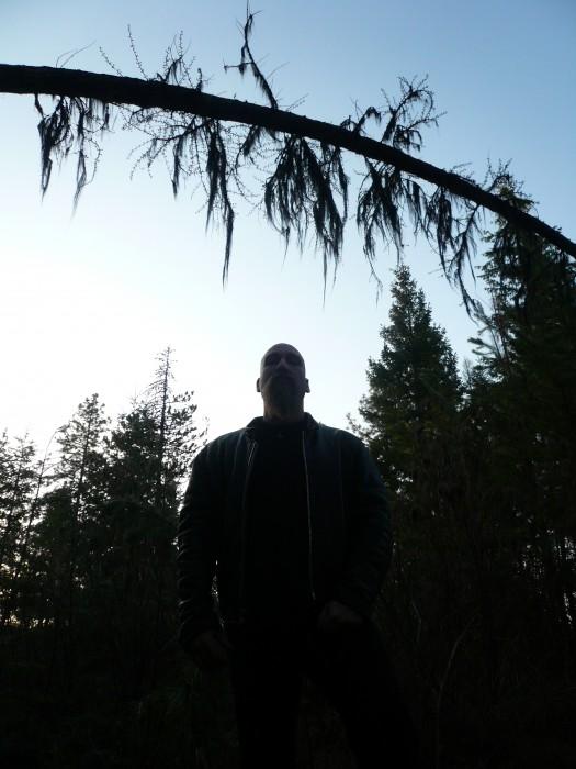 SVT silhouette