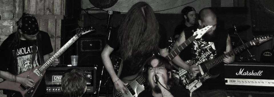 deciblog - shroud live