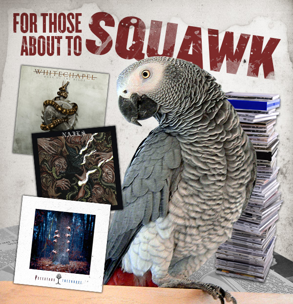 2016-06-29_forthoseabouttosquawk.jpg