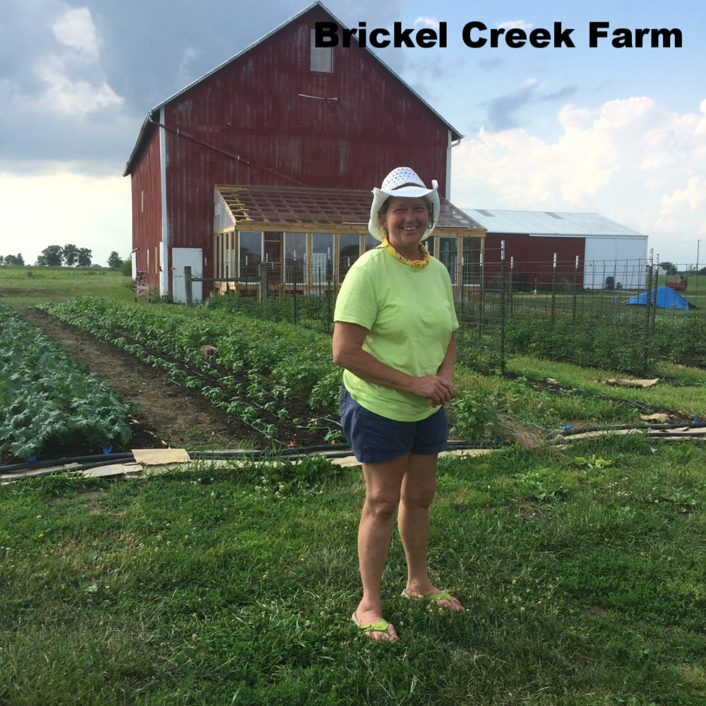 Brickel_Creek_Farms.png