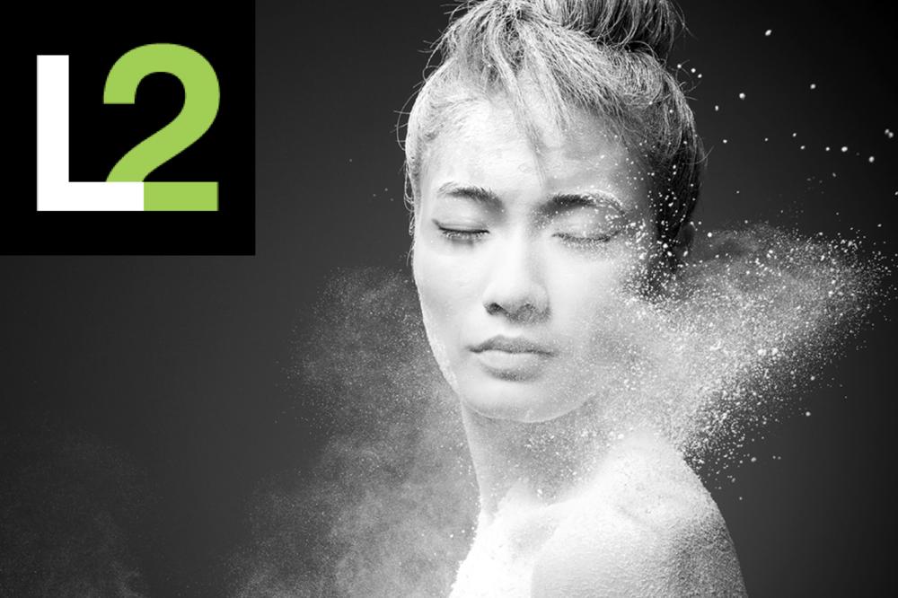 Digital IQ for Beauty Brands, L2 Inc   Data Visualization