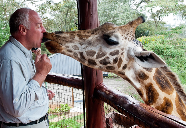 Randy Getting a Special Giraffe Kiss