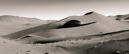 Black & White II Dunes  Nikon D300, 17-55mm @ 30mm,ISO 250,f8, 1/320 sec