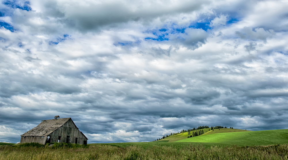 20140621_Palouse_H5D_8506-Edit-Edit.jpg