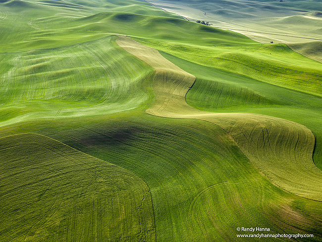 The Wonderful Palouse taken from the air with a Hasselbald H5D40 fitted with a 35-90mm and a 2 axis gyro stabilizer.
