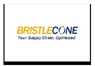 bristlecone.png