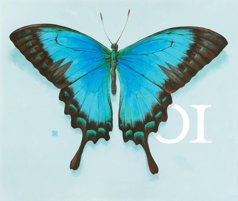 #1 Butterfly