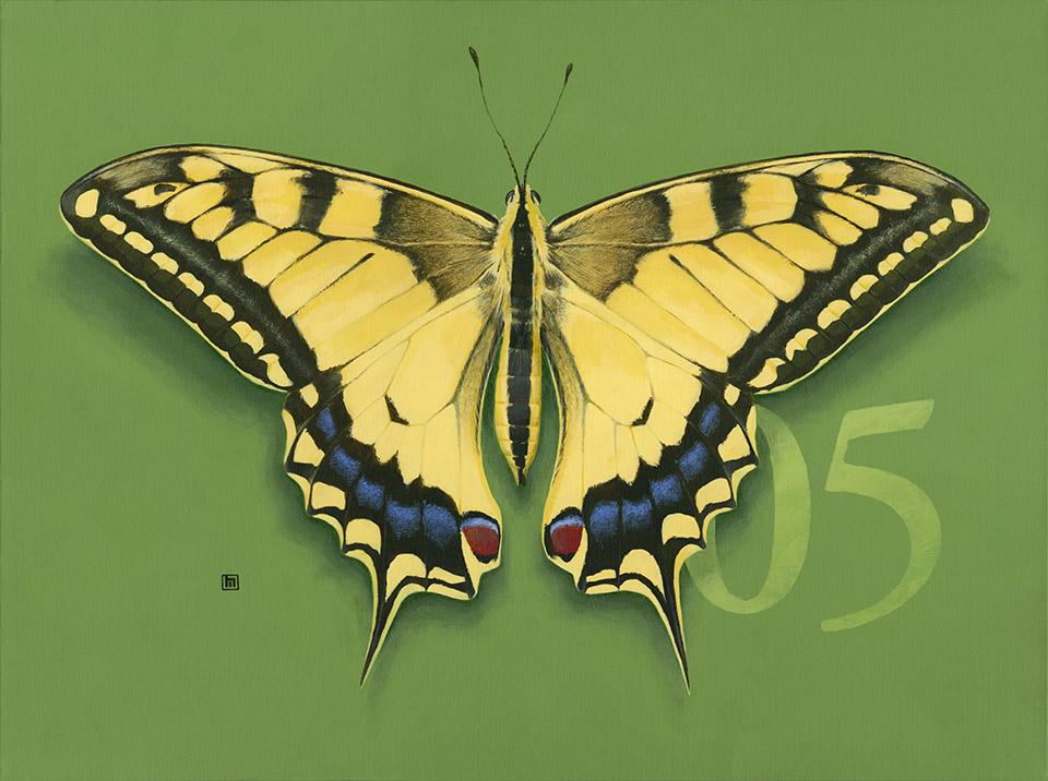 #5 Swallowtail Butterfly