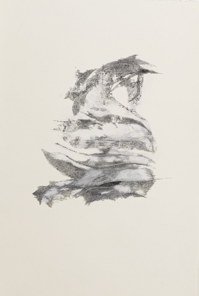 """Untitled, Graphite/Chalk 15"""" x 22"""""""