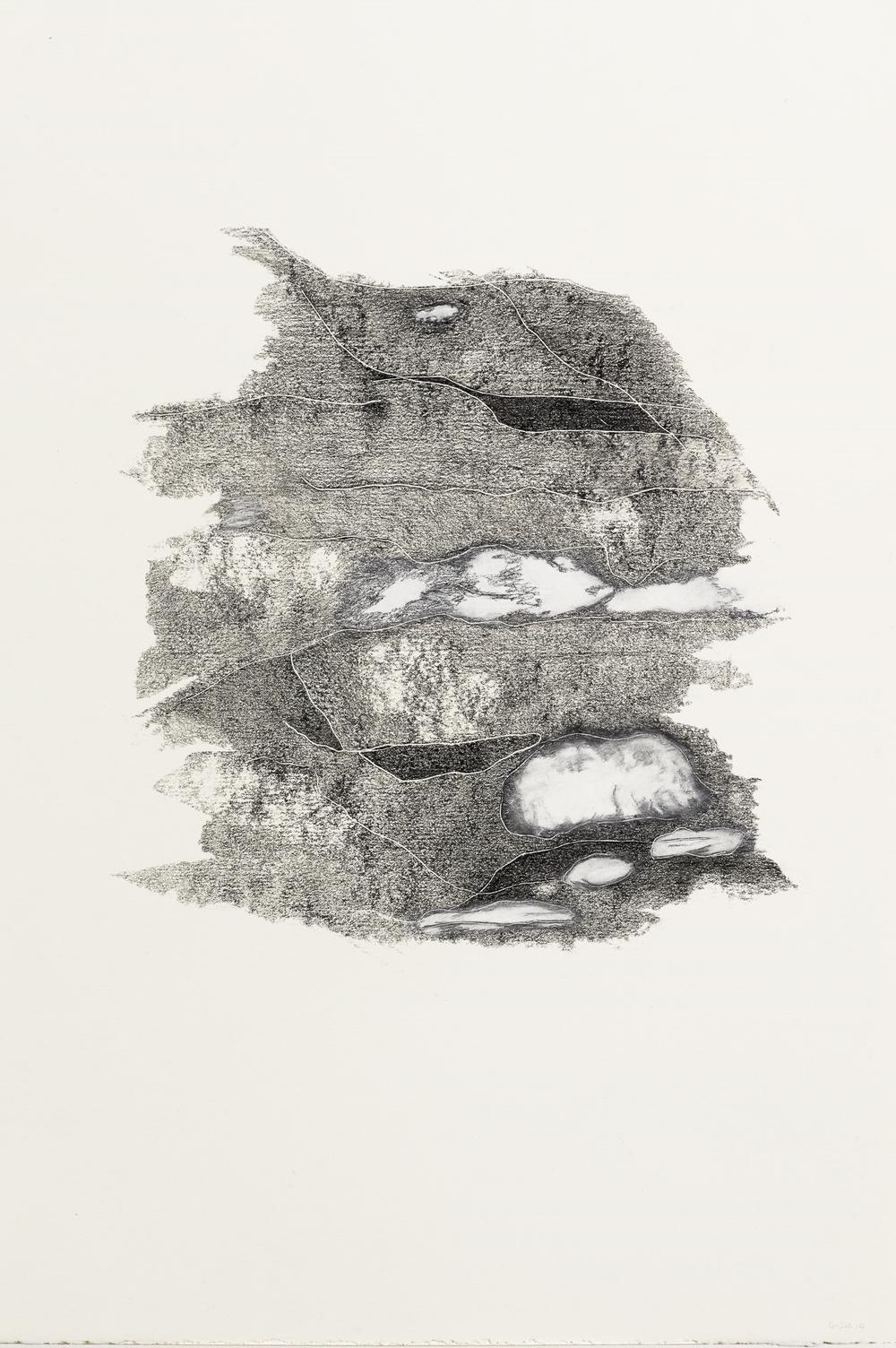 """Untitled, Graphite/Chalk 15""""x 22"""""""