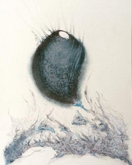 """Untitled,  Graphite/Indigo  Chalk  7 1/2"""" x 11"""""""