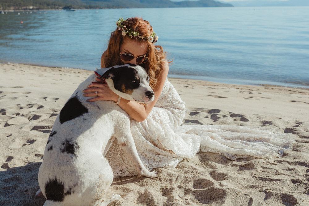 Incline village wedding bride hugging her dog photo