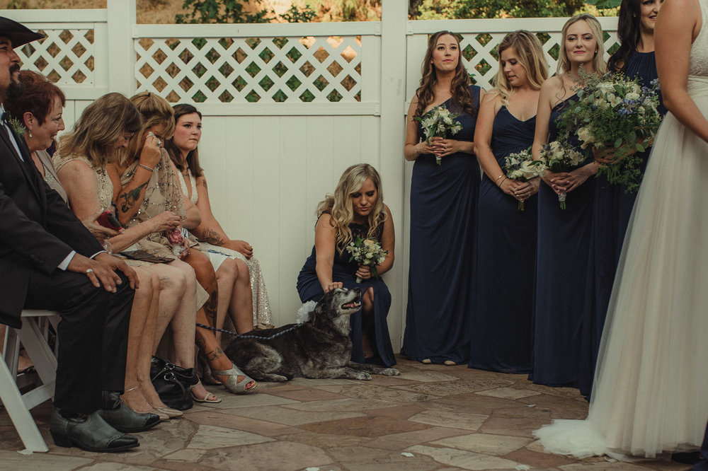 Wedgewood Sequoia Mansion wedding bridesmaid during the ceremony photo