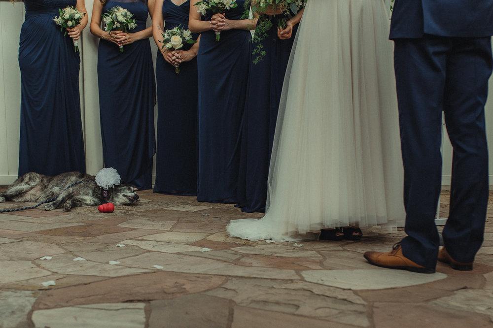 Wedgewood Sequoia Mansion wedding dog sleeping photo