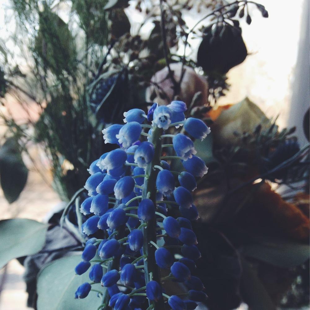Diy Flowersblog Flora Symbolica
