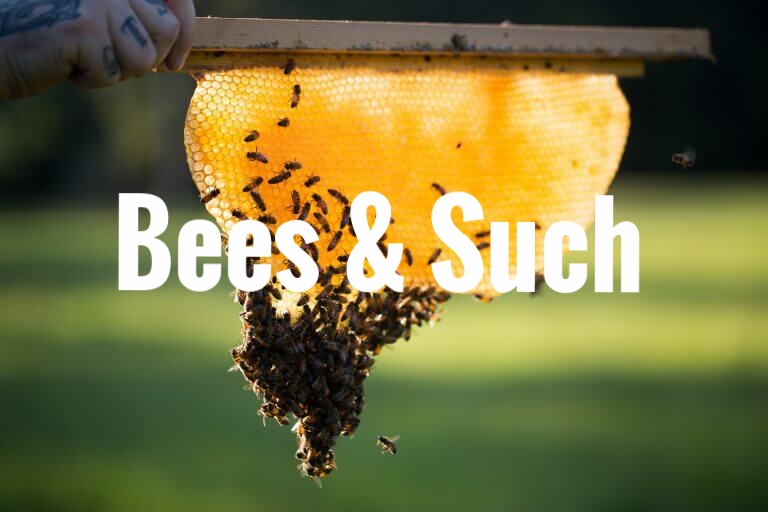 Bees and Such - Jennings Apiaries
