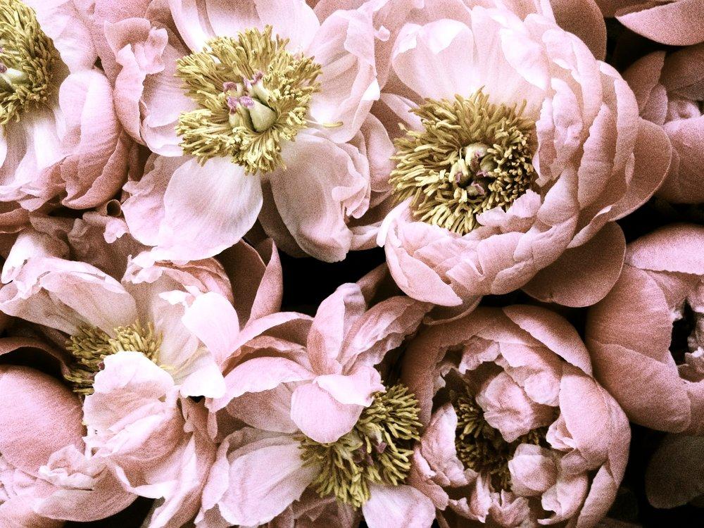 Fleur Events