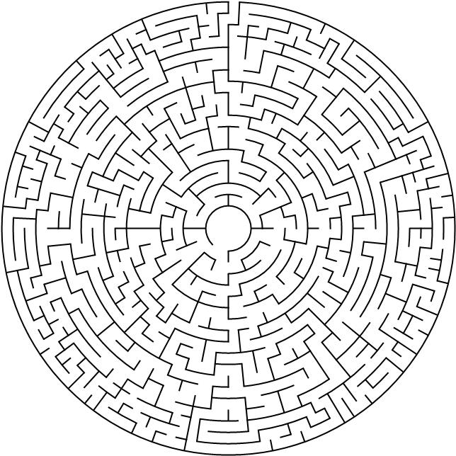 40 cells diameter theta maze.png