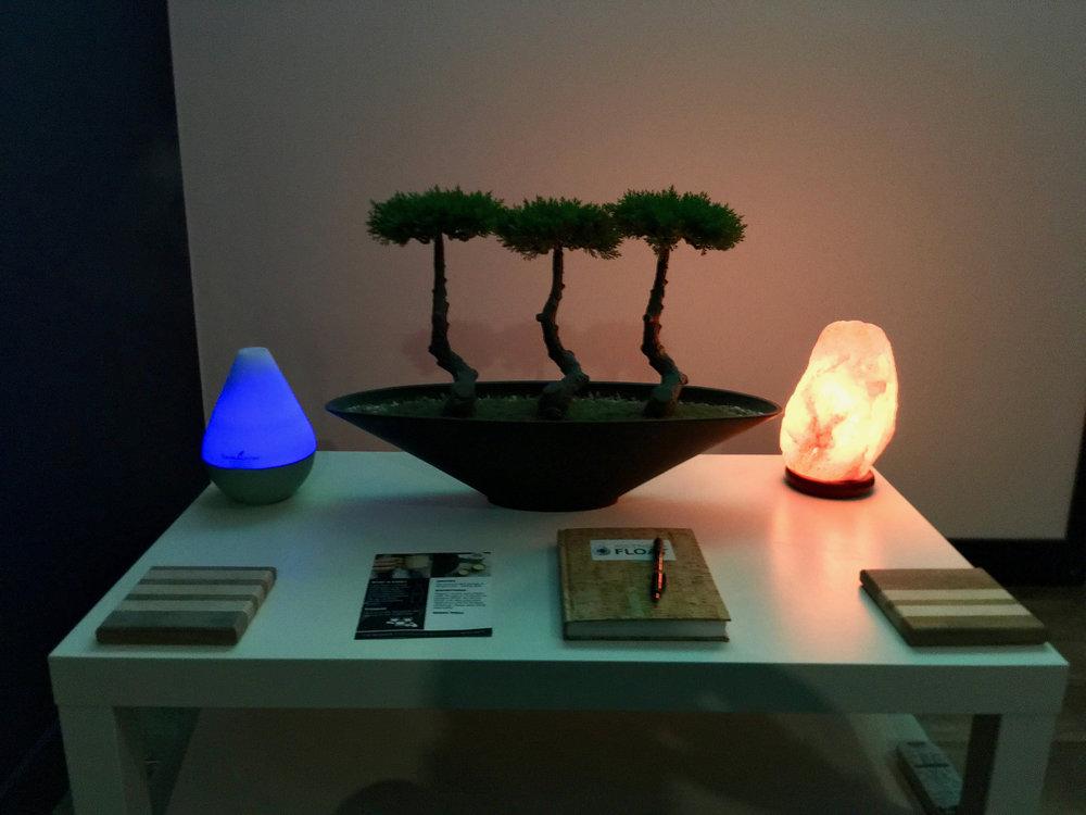 Salt Lamp and Diffuser.jpg