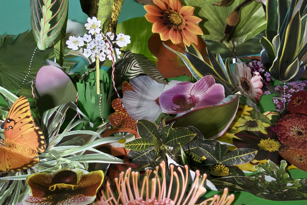 plizm :     Plants byTrey Wright
