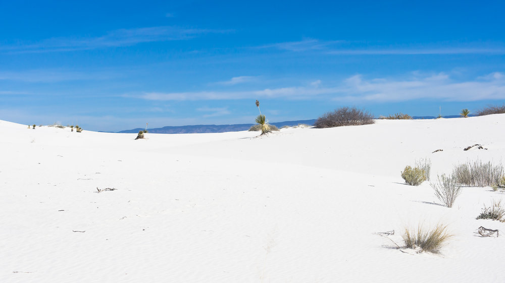 White Sands-041 a-2.jpg