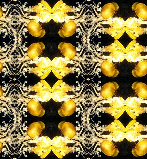 yellowjellyfinalhalfdroppatterndarkexport_500.jpg