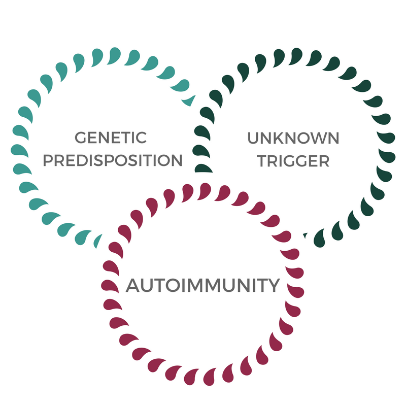 Autoimmune disease, conventional model of autoimmunity, BioAdaptive Medicine, Autoimmune Reset Program