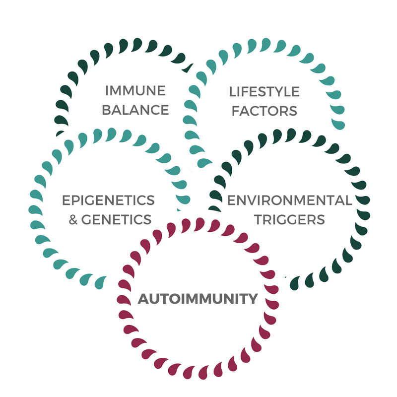 Integrative Approach to autoimmunity, integrative rheumatology, Autoimmune Reset Program
