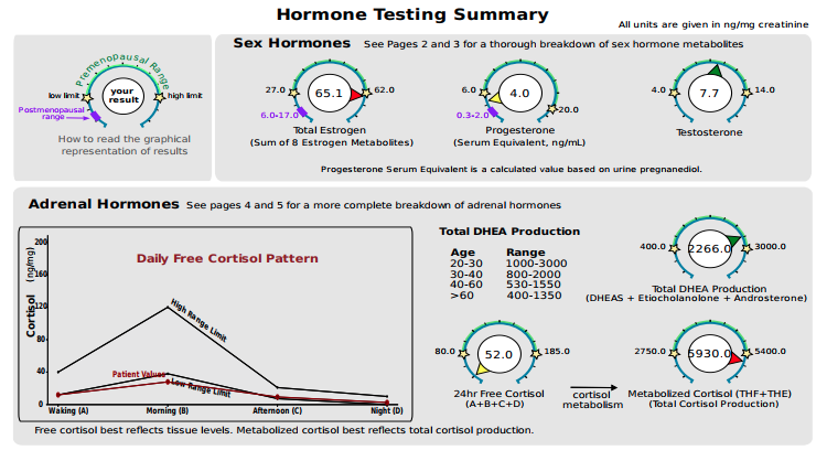 Click to see a sample hormone report summary.