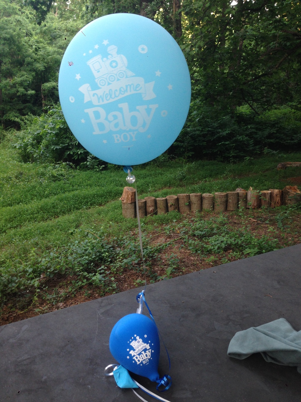 This balloon randomly showed up on our property a few weeks ago...maybe nature was hosting a baby shower?  At any rate it got it right, and we're pleased to have the built-in announcement!