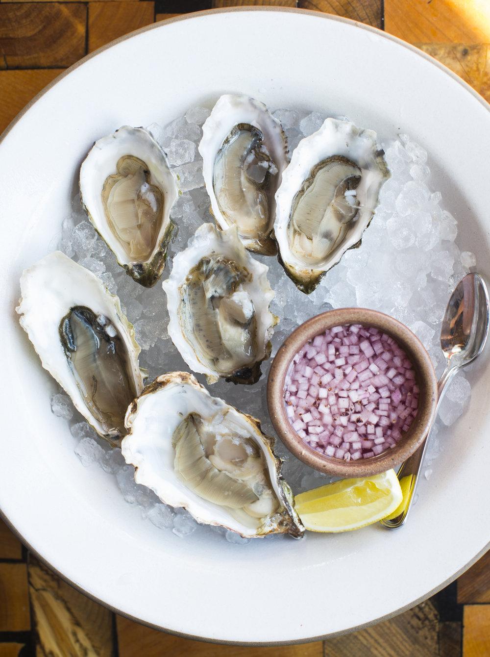 oysters_1.jpg