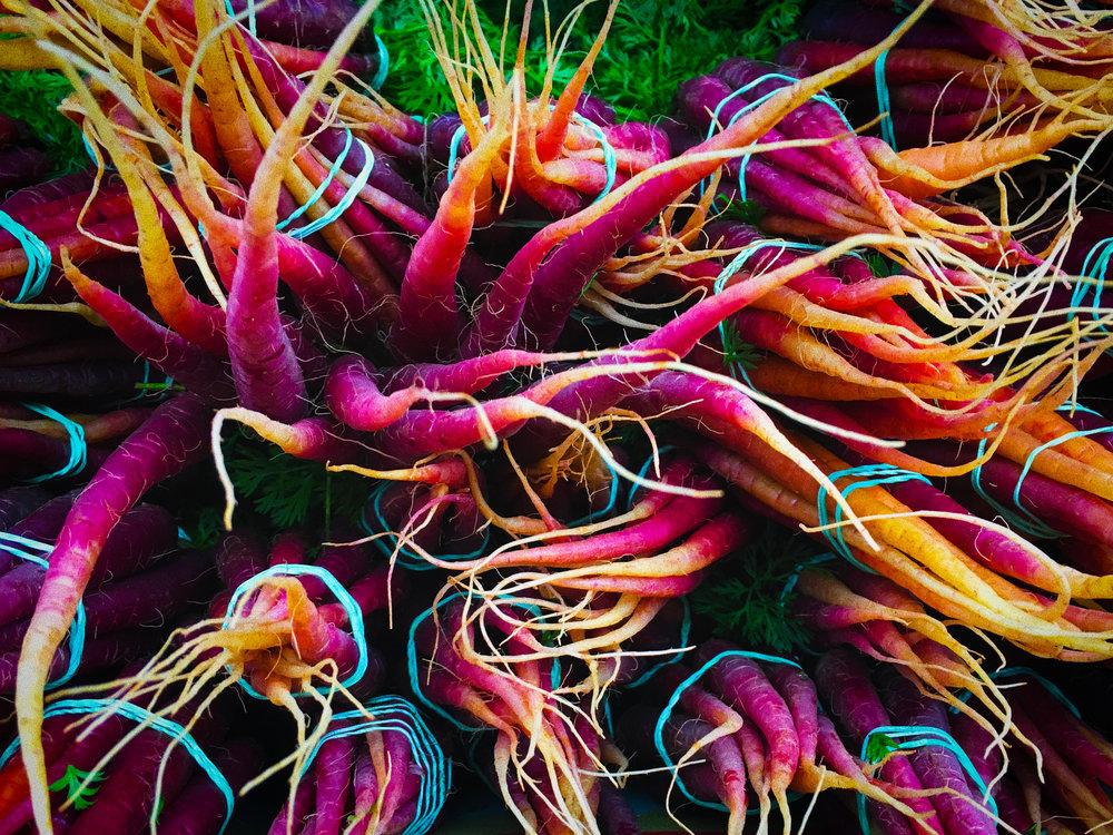 rainbow-carrots-1.jpg
