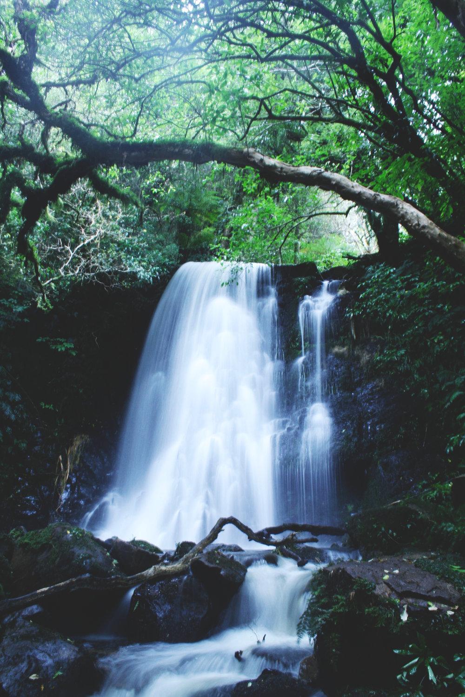 waterfall-newzealand.jpg